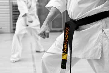 cfab424ba TAO DISTRIBUTION   Store for martial arts   Karate   Taekwondo   Tai ...